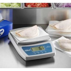 Receiving scale type ERS-60...